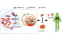 a-new-epigenetic-player-in-melanoma-tumor-progression-and-metastasis