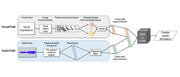 Figure 1. Decision-Level Fusion for emotion recognition