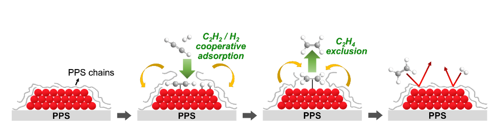Scheme 1. Selective acetylene partial hydrogenation over Pd catalyst supported on PPS.